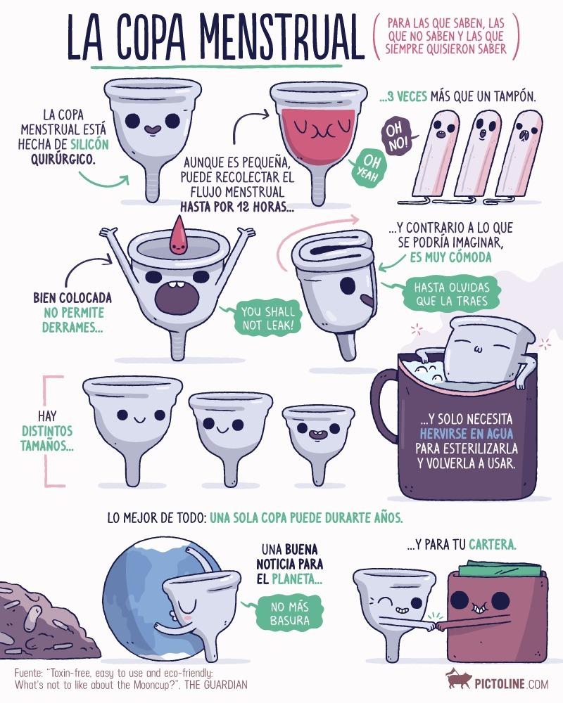 copa-menstrual-viva-cup-de-silicona-medica-duracion-10-anos-D_NQ_NP_744354-MLM27517675368_062018-F.jpg